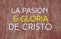 """Cap #23 """"La pasión y Gloria de Cristo"""""""