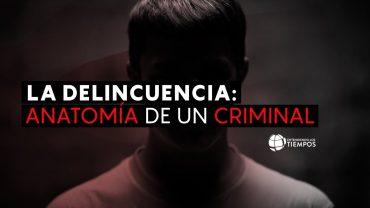 Cap #65 La delincuencia: Anatomia de un Criminal